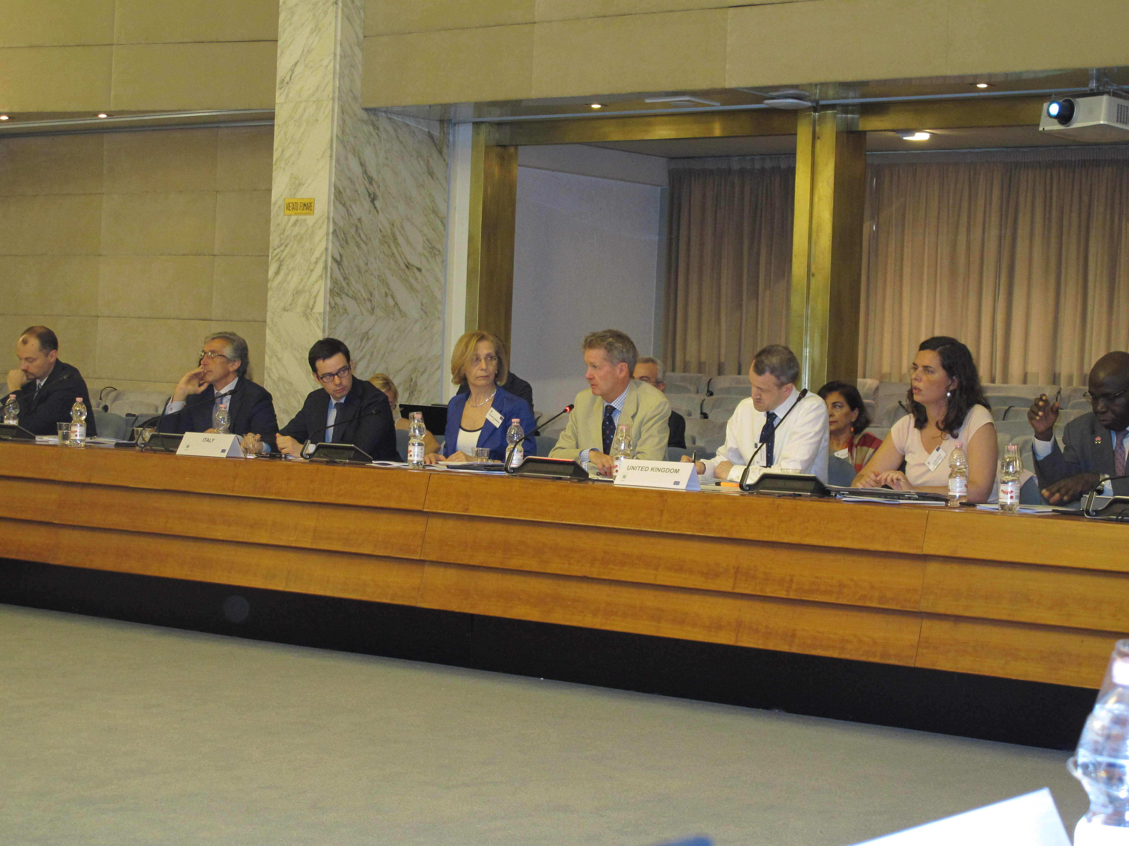 2nd Informal Level Working Group in Rome, 2016
